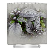 Silver Leaves And Berries Shower Curtain