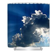 Silver Lining I Shower Curtain