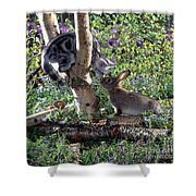 Silver Tabby And Wild Rabbit Shower Curtain