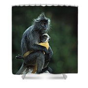 Silvered Leaf Monkey And Baby Shower Curtain