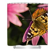 Simple Butterfly Shower Curtain