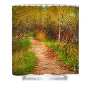 Simple Pathways Shower Curtain