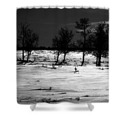 Simple Trees Shower Curtain by Empty Wall