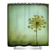 Simplexity Shower Curtain