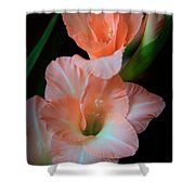Simply Glad Shower Curtain by Karen Wiles