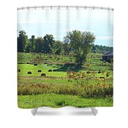 Simply Vermont Shower Curtain