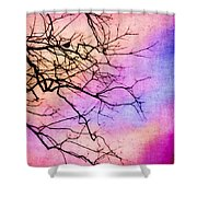 Singing in the Sunshine Shower Curtain by Judi Bagwell