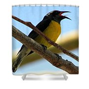 Singing My Heart Out Shower Curtain