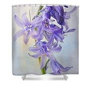 Single Bluebell Shower Curtain
