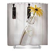 Single Rudbeckia Flower Shower Curtain by Amanda Elwell