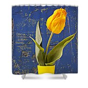 Single Yellow Tulip In Yellow Vase Shower Curtain