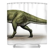 Sinraptor Dongi, A Prehistoric Era Shower Curtain