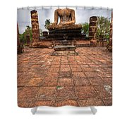 Sitting Buddha Shower Curtain