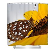 Sitting Sunny Shower Curtain