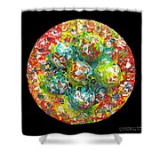 Six  Colorful  Eggs  On  A  Circle Shower Curtain