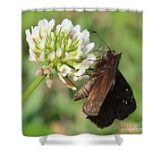 Skipper On Clover Square Shower Curtain