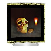 Skull And Candle Shower Curtain