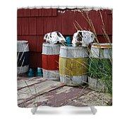 Skulls On Barrels Shower Curtain