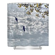 Sky Clouds And Geese Shower Curtain