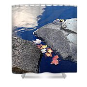 Sky Reflection Leaves And Rocks Shower Curtain