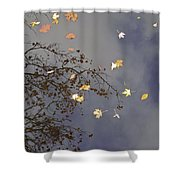 Sky Water Clouds Shower Curtain