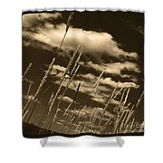 Sky Writer Shower Curtain