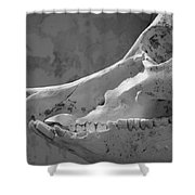 Slackjaw Shower Curtain