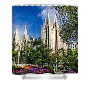 Slc Nw View Shower Curtain by La Rae  Roberts