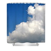 Sleeping Bear Cloud Shower Curtain