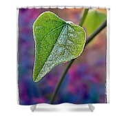 Smilax Shower Curtain