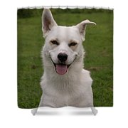 Smiley  0151 Shower Curtain