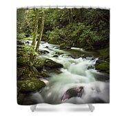 Smokey Mountain Stream No.312 Shower Curtain