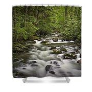 Smokey Mountain Stream No.362 Shower Curtain