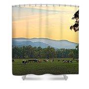Smoky Mountain Horse Herd Shower Curtain