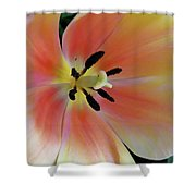 Smooth And Silky Shower Curtain
