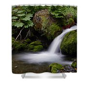 Smooth Pool Shower Curtain