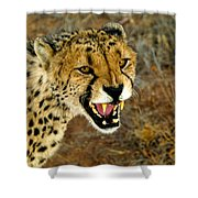 Snarl Shower Curtain