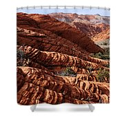 Snow Canyon 2 Shower Curtain