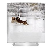 Snow Day Play Shower Curtain