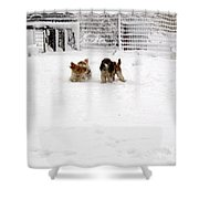 Snow Day Play II Shower Curtain