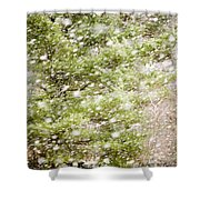 Snow Falling In Front Of Pines Shower Curtain