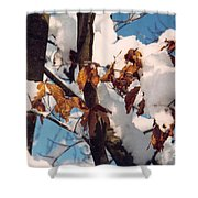 Snow On The Fall Leaves Shower Curtain