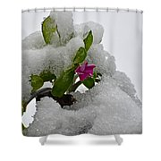 Snow On The Flowers Shower Curtain