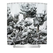 Snow On The Pines Shower Curtain