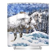 Snow Play Shower Curtain