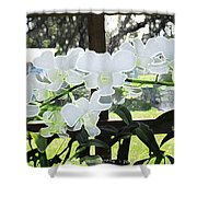 Snow White Orchid On The Water Accented Fx  Shower Curtain