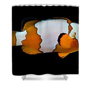 Snowflake Clownfish Shower Curtain