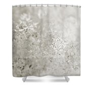 Snowflake In White Shower Curtain