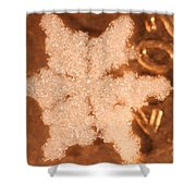 Snowflake On Coin Shower Curtain