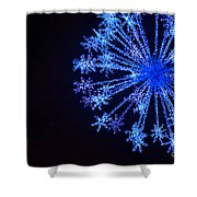 Snowflake Sparkle Shower Curtain